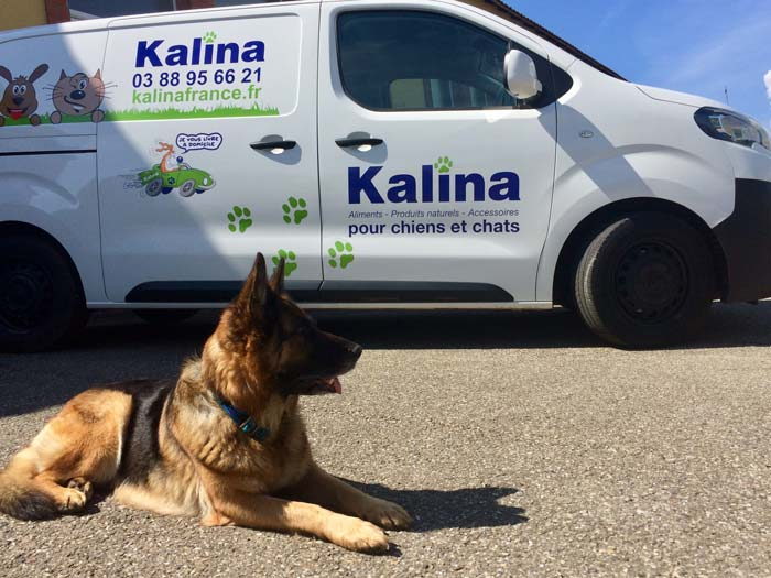 Kalina-livraison